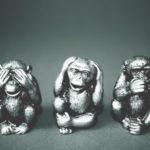 3 Affen haben Angst